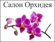 Орхидея, салон красоты в Звенигороде